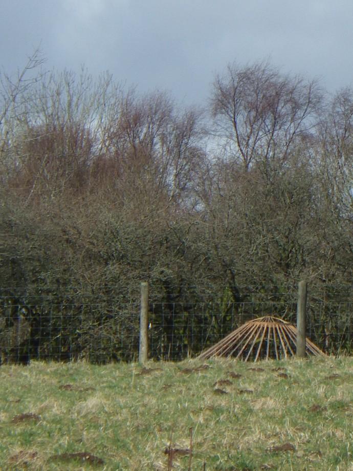 Yurt in the Landscape