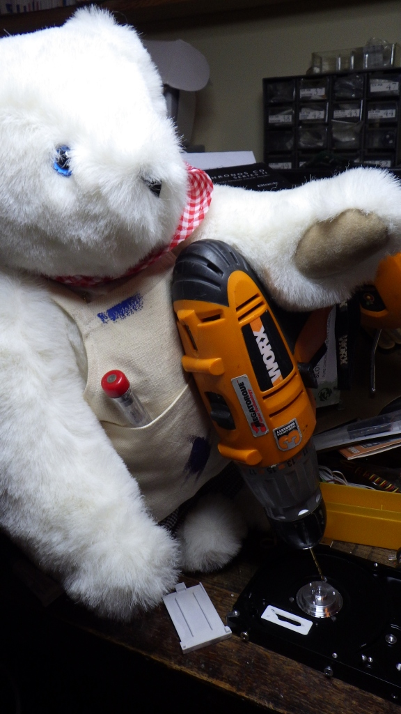 A bear and a drill. What could possibly go wrong?