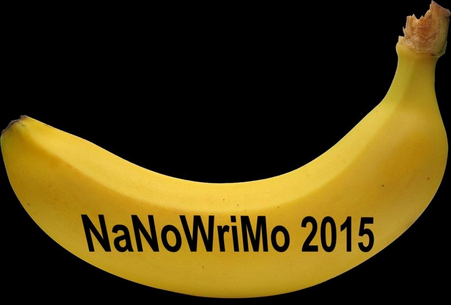 BaNaNoWriMo 2015