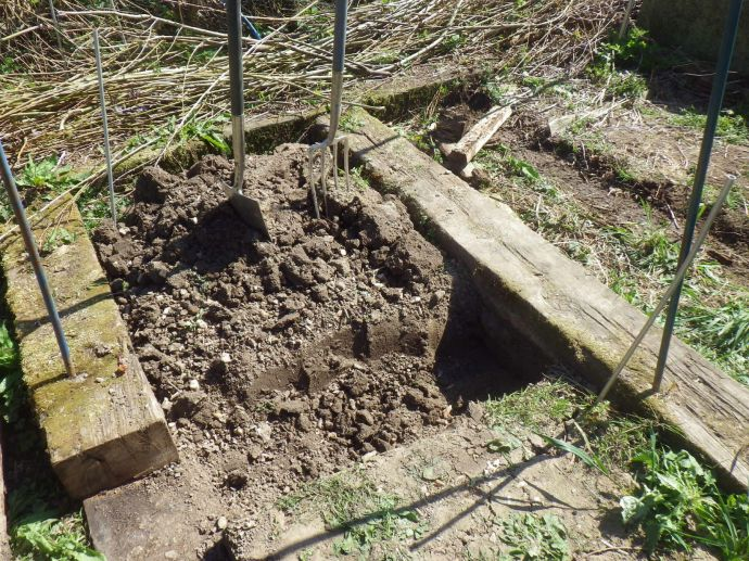 Digging a trench to take the sleeper that will form the front of the bed